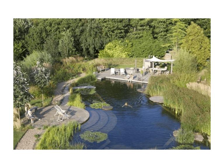 zone de baignade d'une piscine naturelle