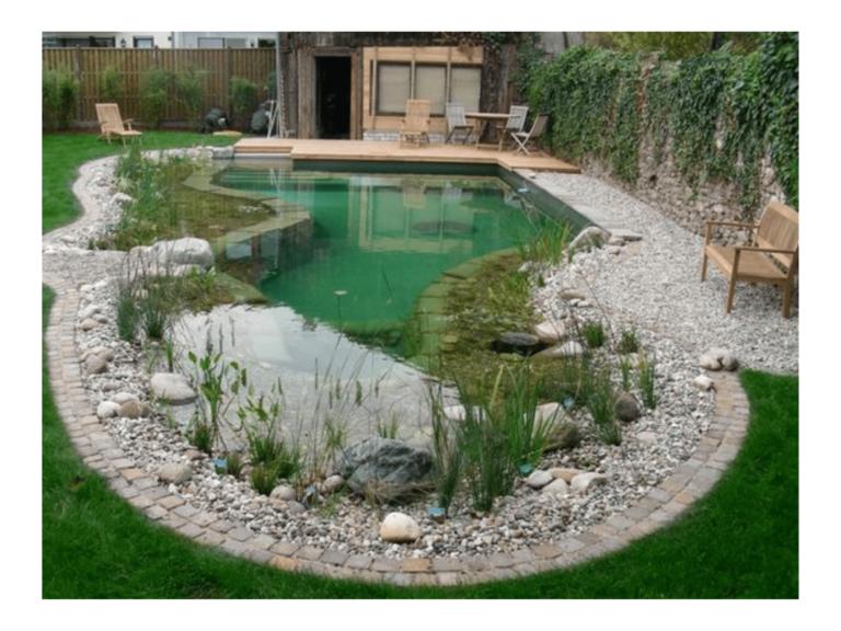 piscine naturelle en autoconstruction