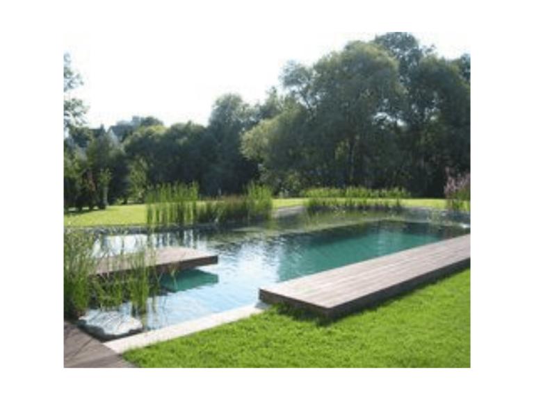 exemple de piscine naturelle moderne